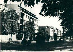 Ulica Žarka Zrenjanina, Bela Crkva