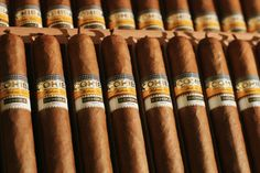 Cuban Cigars: A Form of Art - The Guide