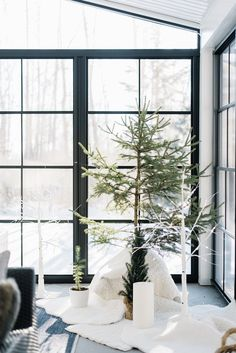 Simple Outdoor Christmas Decor Ideas - The Ginger Home