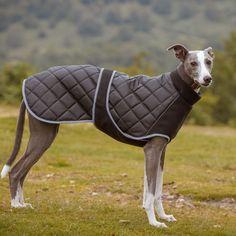 Kent-Quilted-Fleece-Hound-Coat-Black