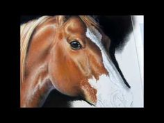 """Painting a Day Demonstration - Gypsy Vanner by Roberta """"Roby"""" Baer PSA - YouTube"""