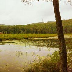Mohawk pond, Cornwall CT