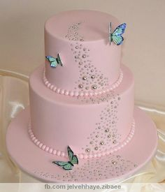 i love this simple pink and silver butterfly cake. may have to try something similar