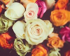 Paris Roses Print, Flower Photography