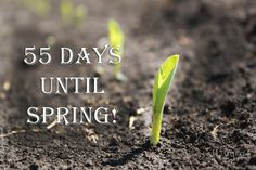 Twitter / ILcorn: Not that we are counting or anything....