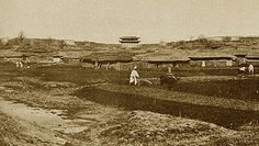 1902-1903 숭례문 ,농부가 밭을 갈고 있는 자리는 지금의 서울역 언저리 부근 인듯 하다