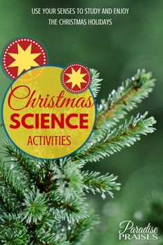 These Christmas science activities and printables will keep your kids engaged in learning while they think they're just having Christmas fun.