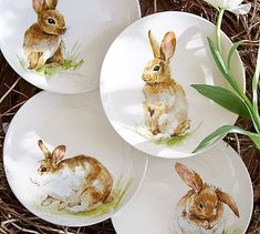 Pasture Bunny Plate, Set of 4 #potterybarn
