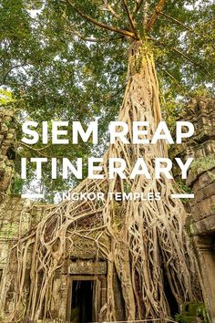 Siem Reap Itinerary – 3 Days Angkor Temples Tour... How to go on a 3 days Siem Reap, Cambodia tour. This 2018 travel guide blog includes a sample itinerary, trip budget, DIY tips, places to visit more. https://www.detourista.com/guide/siem-reap-itinerary/