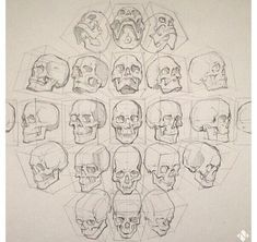 Figure drawing // Head Positions.