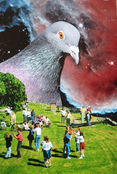 Pigeon People, John Turck Collage