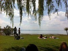 Un prato, un lago, il sole. Ecco cosa é #AlTrasimeno foto di @UmbriaTourism