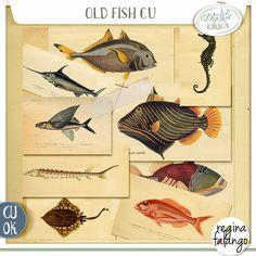 OLD FISH CU