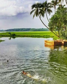 3574 Best Kerala God S Own Country Images In 2019 Malayalam
