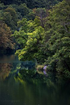 https://flic.kr/p/N84QcN   Emerald lake   On Facebook