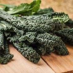 Kale Seeds | Grow Vitamin Rich Kale at Home - EdenBrothers.com