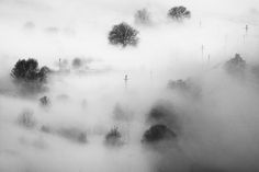 Little Toys by Serban Bogdan on Art Limited Snow Forest, Toy 2, Creepy, Clouds, Abstract, Art Work, Artist, Outdoor, Summary