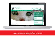 Website design www.owlcottagecattery.co.uk
