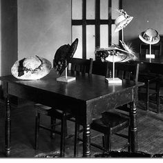 Hats Displayed - Millinery - 1914 Hat Display, Hat Shop, Vintage Hats, Headpieces, Sew, Fresh, Black And White, Store, Photos