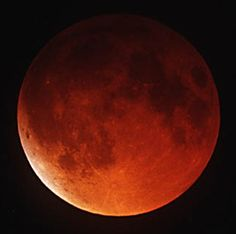 There will be four Blood Moons in the next two years. The first will be the visible in the early morning of April 15 at about 3 am in the USA. Check local times.