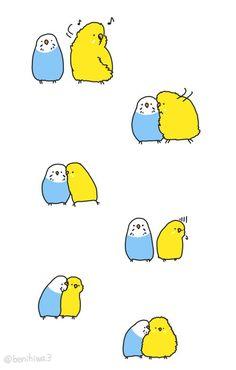 Awww! Da haben sich zwei aber lieb! <3 #Wellensittich #budgies