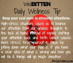 WellBitten Wellness Tip: Focus Away Stress