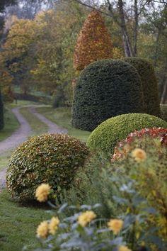 garden design ideas around the country Topiary Garden, Garden Shrubs, Formal Gardens, Outdoor Gardens, Landscaping Tips, Garden Landscaping, Parks, Pergola, Organic Gardening Tips