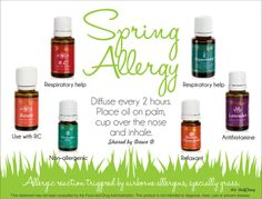Spring Allergies are here! Check this out to see what Young Living essential oils will help so you don't have to take any medication!  If you are interested in more information, http://www.us.ylscents.com/cindyland
