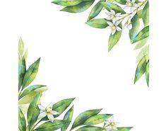 Watercolour Flower Frame Background Clip Art Graphic Design