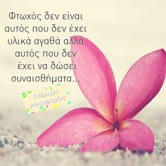Greek Quotes, Peach, Letters, Candy, Sayings, Quotes, Lyrics, Letter, Peaches