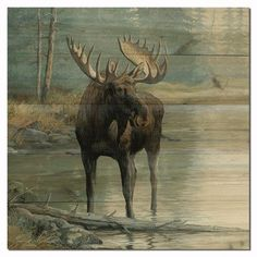 """WGI GALLERY Quiet Water Moose Painting Print Plaque Size: 12"""" H x 12"""" W x 1"""" D"""