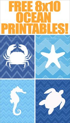FREE ocean animals printables (saved to computer) Ocean Animal FREE Printables {set of - How to Nest for Less™ These would be cute with sand glues in the white space Upstairs or half bath Consejos y guías Ocean Themes, Beach Themes, Baby Shower Marinero, Imprimibles Baby Shower, Diy Pour Enfants, Paper Crafts, Diy Crafts, Beach Crafts, Shell Crafts