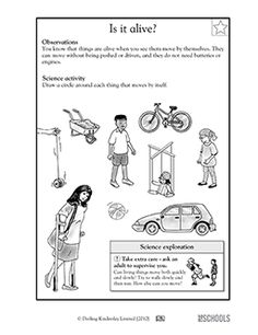 Non-living things first grade science worksheet