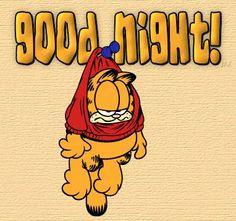 Good Night quotes quote night garfield goodnight good night goodnite good night quotes