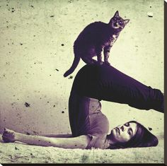 yoga. cat. gray. vintage look. and i already have a spot for it.