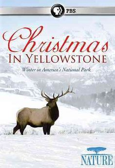 This documentary showcases the breathtaking glory of Yellowstone National Park in the wintertime.