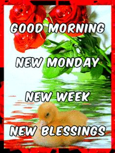 Days Of Week, New Week, Monday Inspirational Quotes, Blessed Week, Monday Blessings, Good Morning Gif, Beautiful Morning, Mondays, Mornings