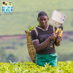 Remember: Behind every cup of #tea, there is a person. Will you treat them fairly? http://BeFair.org/ #FairTrade #BeFair
