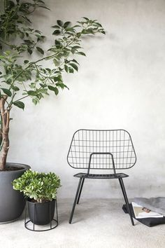 Norm Architects design with modern city living in mind. Take Wire Series, which consists of bases that hold either lamps or plants. Start with Wire Base (availa Home Interior, Interior Styling, Interior Decorating, Filigranes Design, Design Studio, Design Shop, Cactus Plante, Scandinavian Style, Small Fountains