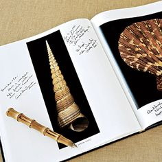 An oversized coffee-table book filled with shell photographs was used as the guest book.
