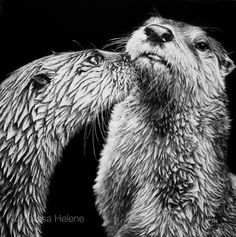 One of my favorite pieces.these fun, playful little critters just make me happy! Another fun scratchboard that I love sharing! Wild Animals, Animals And Pets, Black Paper Drawing, Pencil Drawings Of Animals, Scratchboard Art, Scratch Art, Black And White Artwork, Art Festival, Pet Portraits