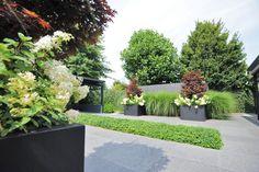 Exclusieve tuin, Moderne tuin, Strakke overkapping, tuinontwerp, Tuinarchitectuur, Tuin renovatie, Hovenier, Tuinarchitectuur, Architect, Tuinen, Tuin. www.hendrikshoveniers.nl