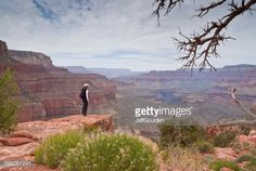Stock Photo : Young Woman Hiker Standing on the Canyon Rim