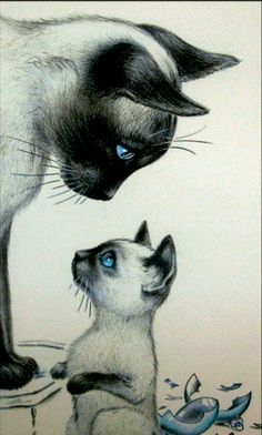 Christmas Mourning, ca. Warrior Cats, Draw Realistic, Black Cat Art, Cat Cards, Cute Animal Drawings, Cat Tattoo, Cat Drawing, Beautiful Cats, Cool Cats