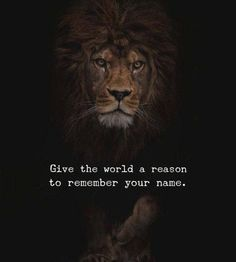 Quotes about success 148 lion quotes, words quotes, sayings, me Inspirational Quotes About Success, Motivational Quotes For Life, True Quotes, Words Quotes, Positive Quotes, Sayings, Strong Quotes, Quotes Motivation, Motivational Music