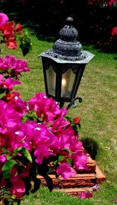 Ferro e flores, lindo.