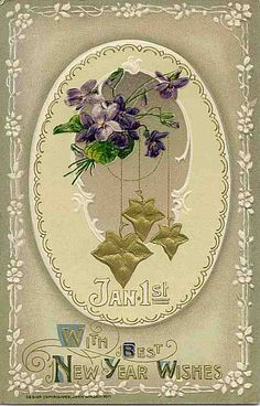 new year violets