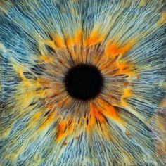 Eye see!