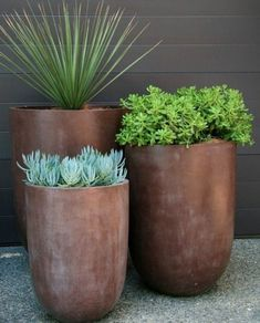 Garden Design 19 Super Chic Outdoor Planters That Will Make your Plants Look Beautiful Than Ever! - Check out this list of gorgeous outdoor planters that come with great capabilities of displaying your plants in a statement-making way. Succulents Garden, Garden Planters, Flowers Garden, Flower Pots, Diy Flower, Tall Outdoor Planters, Planter Pots, Planters Around Pool, Front Yard Planters
