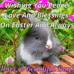 Wishing You Peace Love And Happiness On Easter And Always